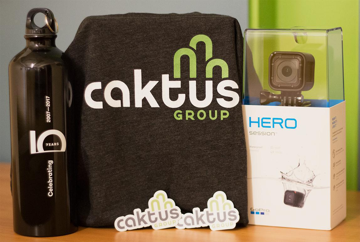 Swag and giveaways for the Caktus DjangoCon booth