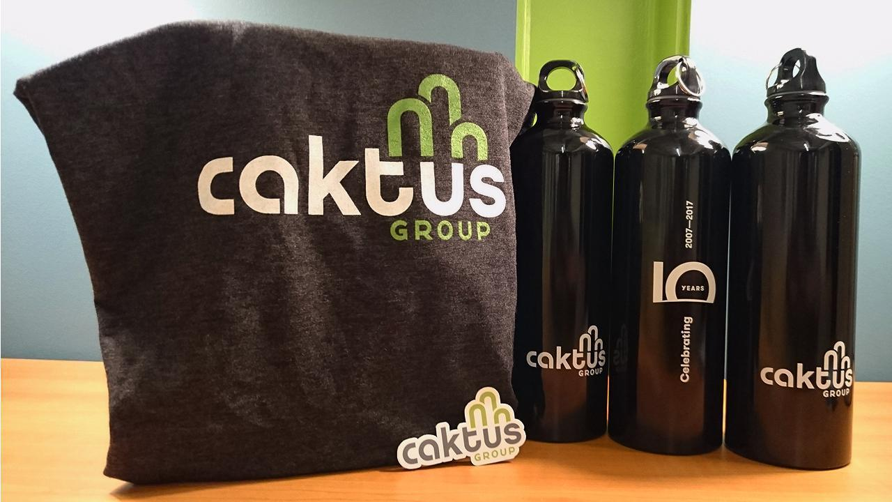 Caktus swag for PyCon 2017